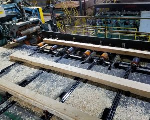 Cants to be sawn into boards