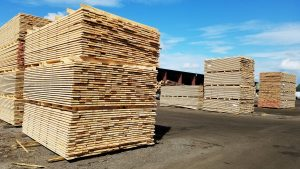 Lumber stacked for drying